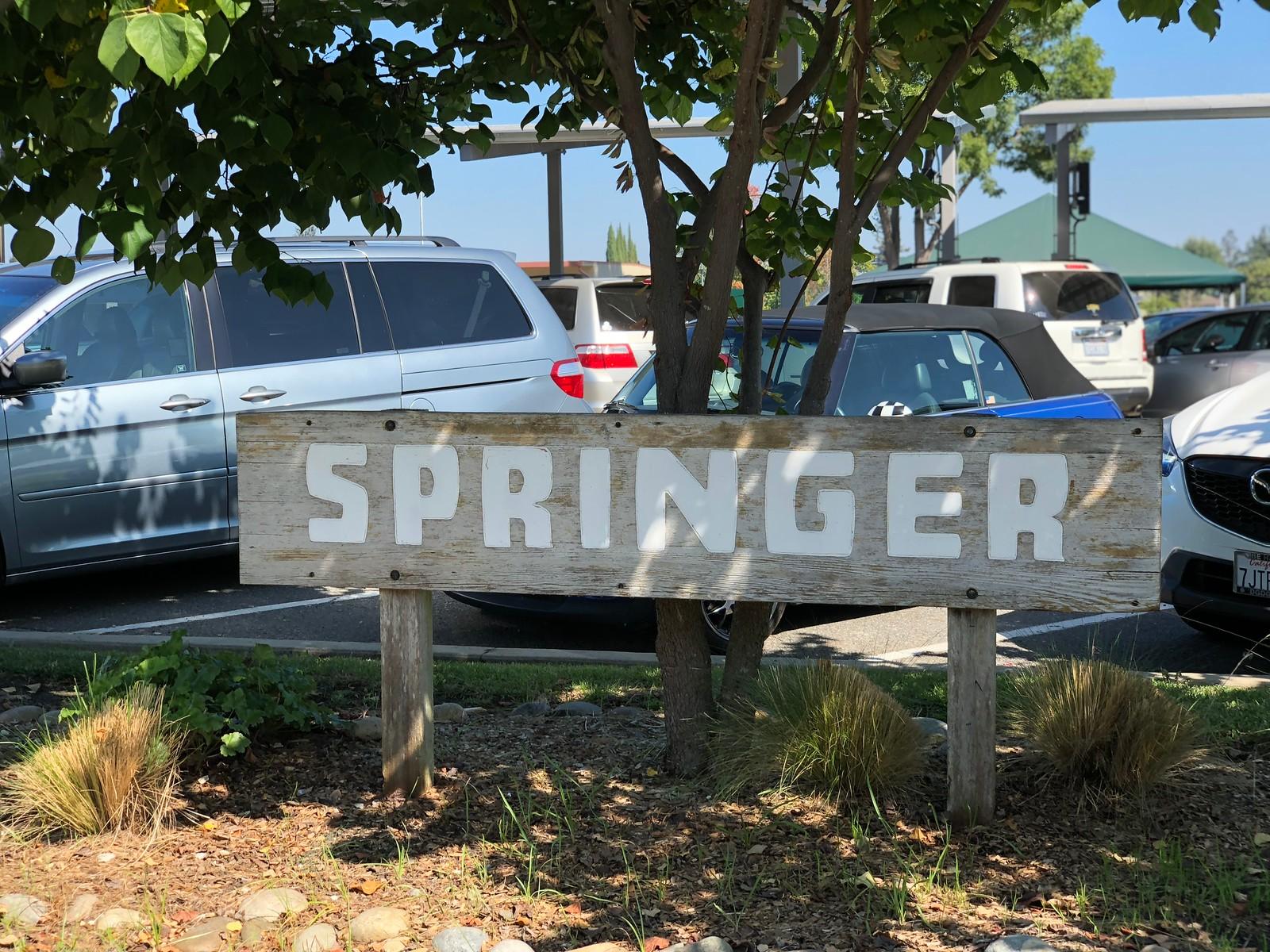 Springer Elementary School Sign Mountain View Blu Skye Media-X3.jpg