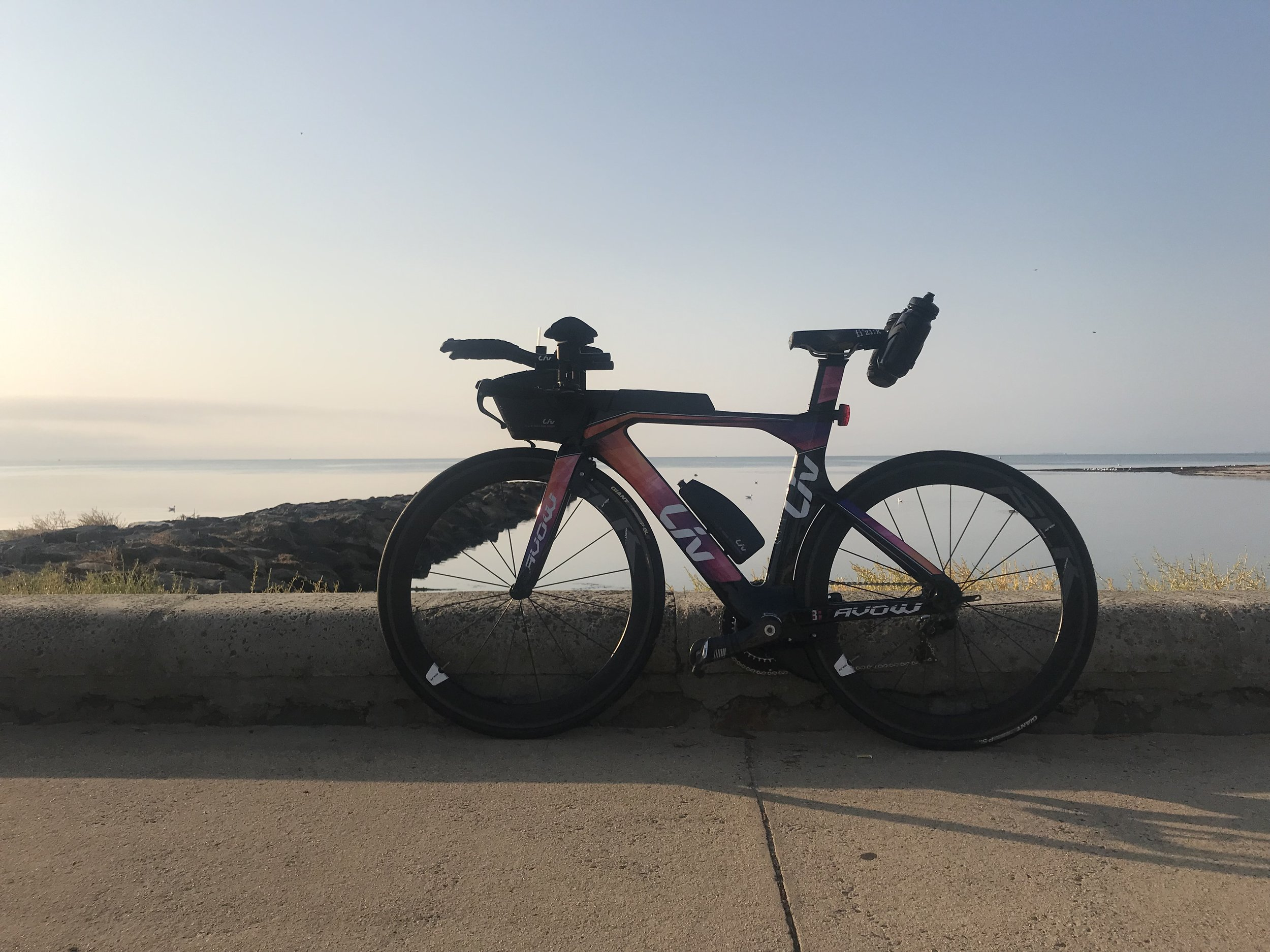 This is Carmen - she is a Liv Avow Pro 0 and it to be my new trusty steed following the tragic death of Violetta