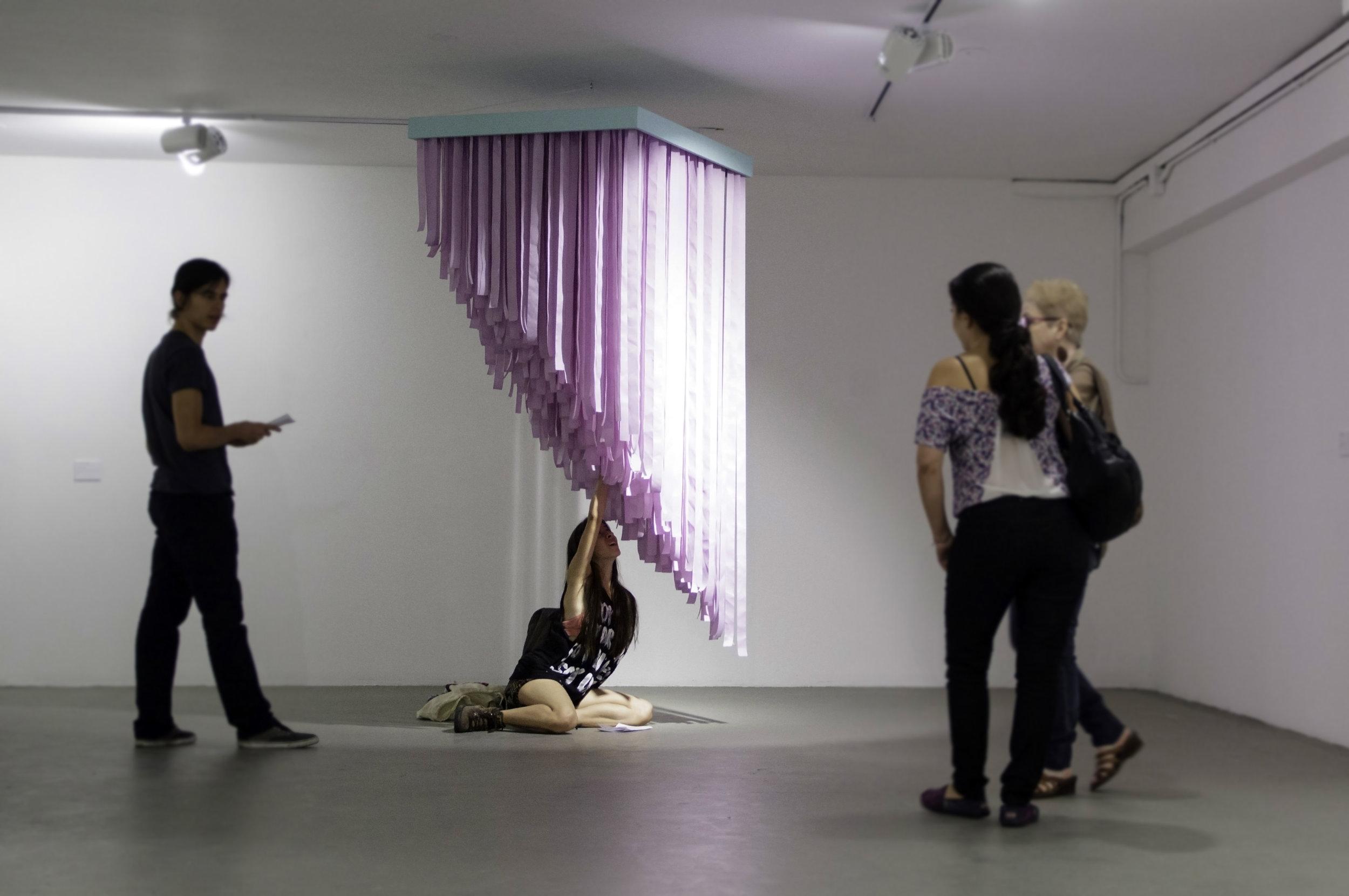 Campos De Gutierrez Exhibition
