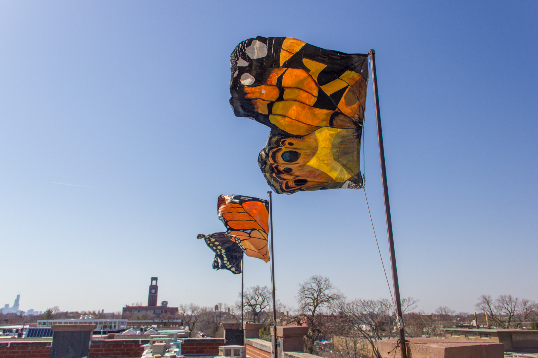 Three bright flags that look like butterfly wings flying on a rooftop