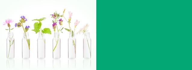 Homöopathie - Die Homöopathie ist eine sanfte Medizin mit großer Wirkung. Sie wurde im 18. Jahrhundert durch den Arzt und Chemiker Samuel Hahnemann (1755 – 1843) entdeckt. mehr…