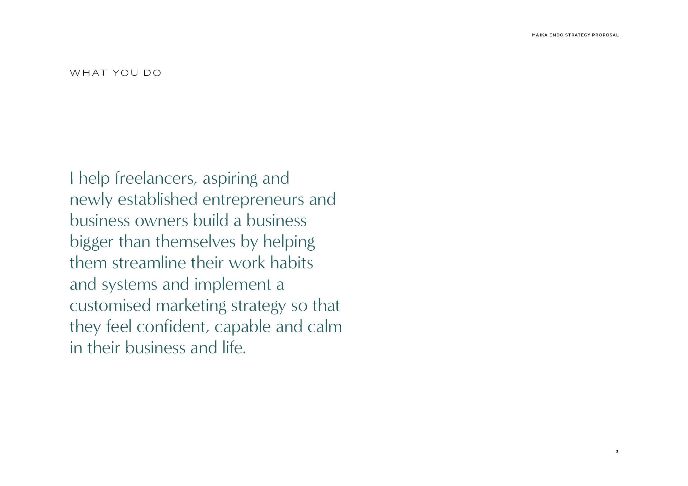 Maika Endo Strategy Proposal3.jpg