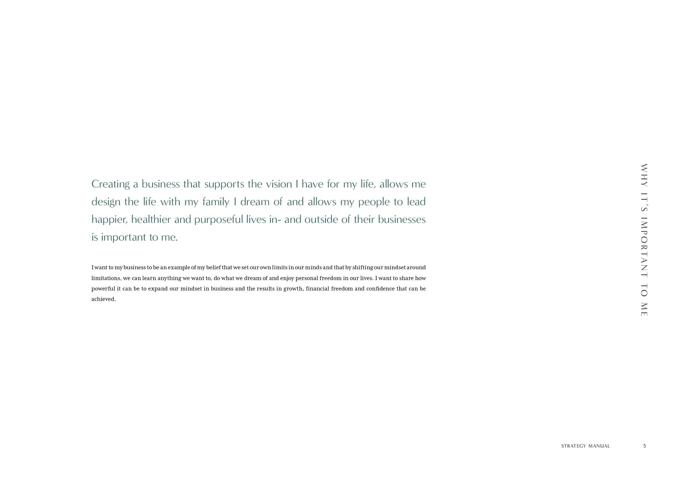 Maika Endo Strategy Manual5.jpg