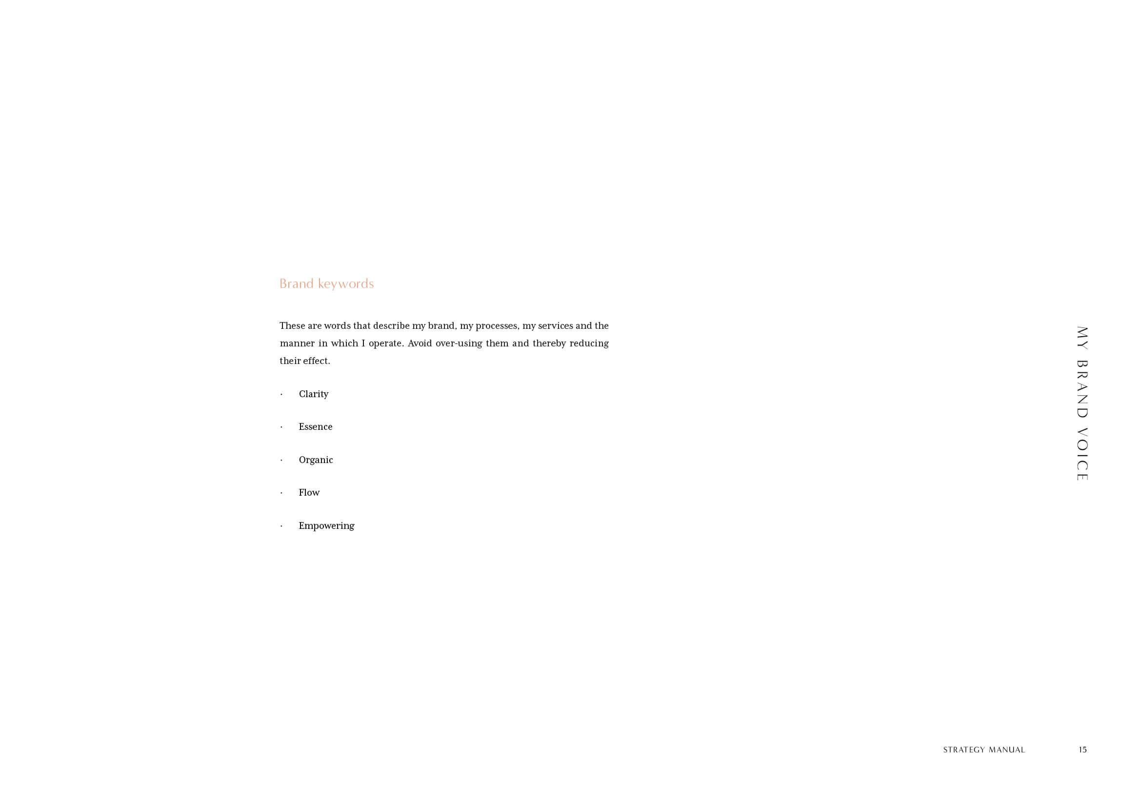 Maika Endo Strategy Manual15.jpg