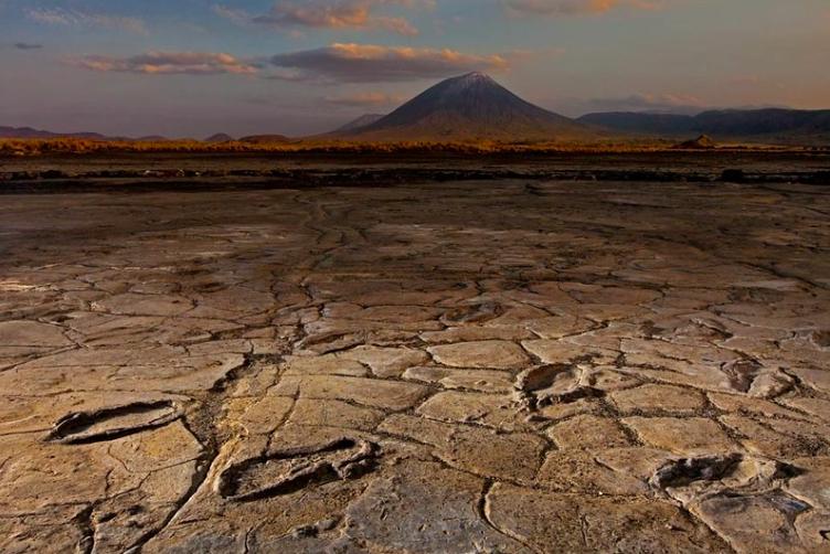 Hominid Footprints -