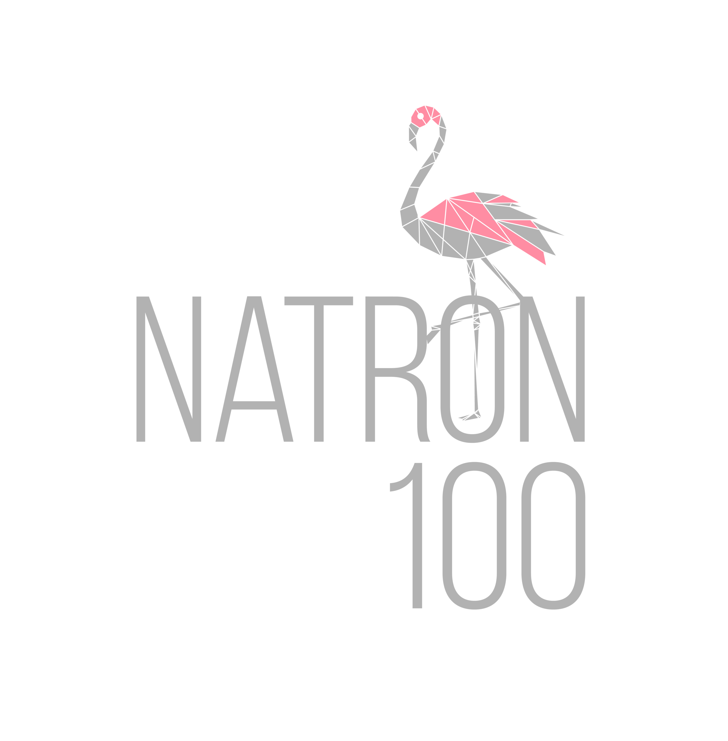 Beats, Dance, Adventure, heat! - The first festival was held in 2016 and was held at Lake Natron camp, Ngare Sero. It is called Natron 100 because we sell only 100 tickets. We like to keep it micro to have a low impact and eco friendly festival to protect and preserve the area.