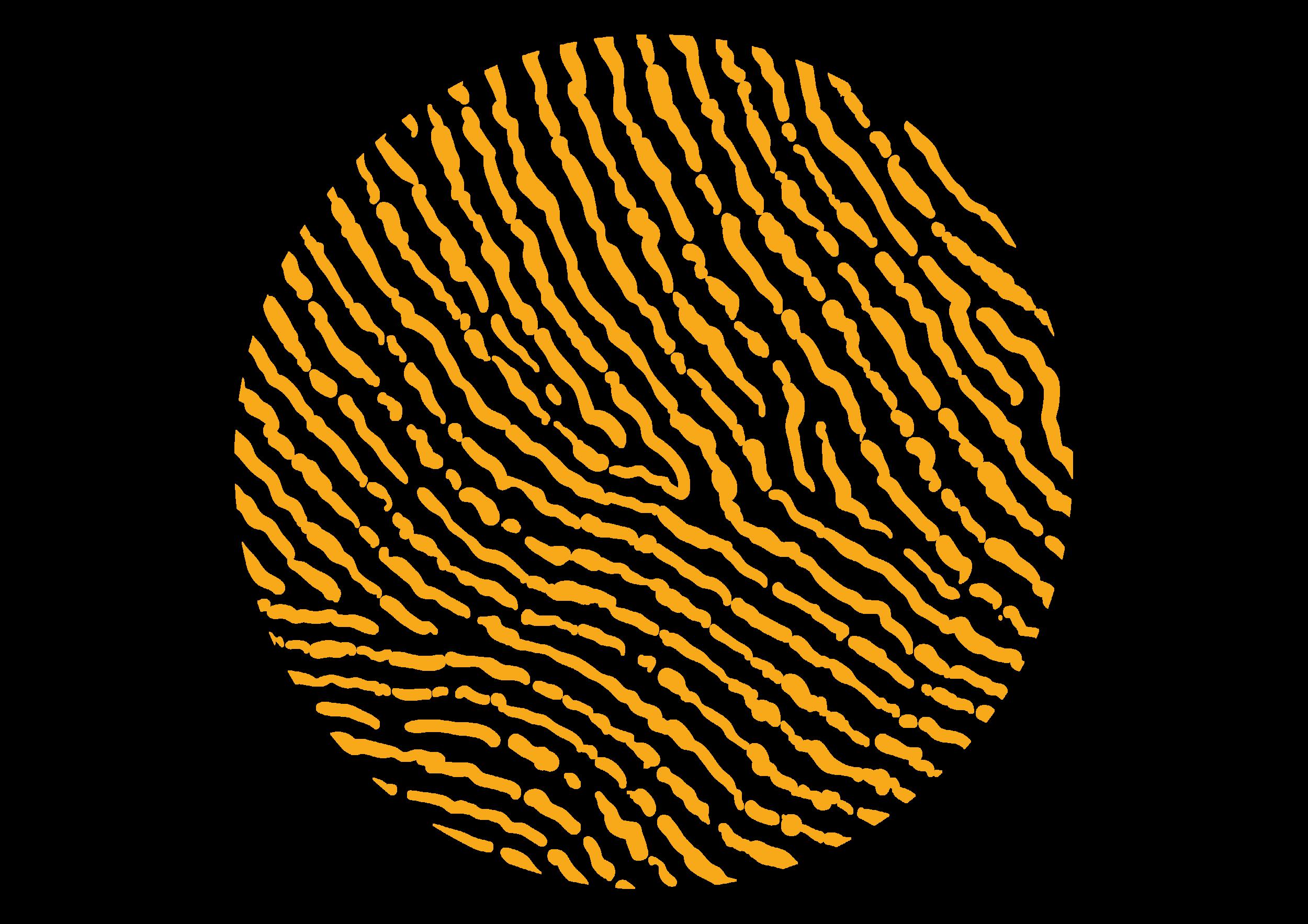 Fingerprint_5.png