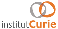 Copy of Logo Institut Curie