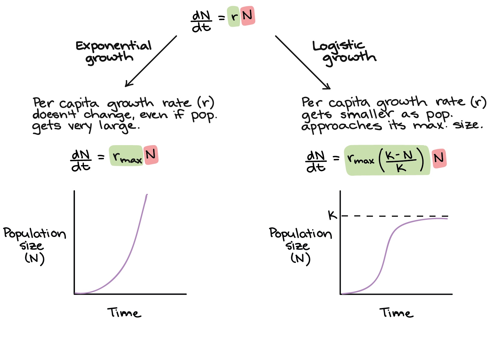 Image credit:  Khan Academy  - Examples of common population growth curves.