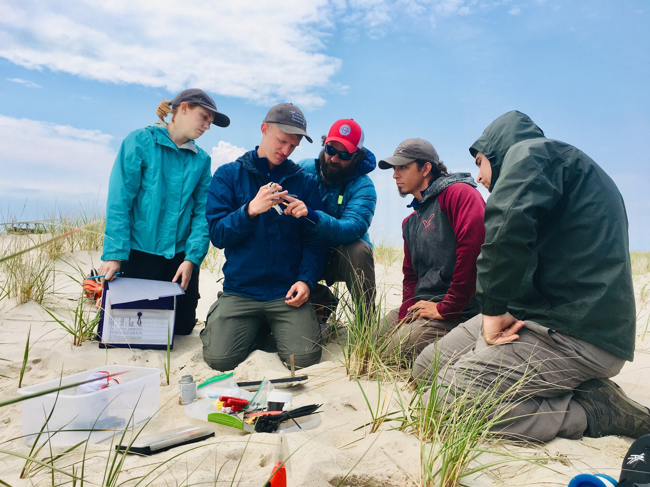 Dan Catlin working with some of our biologists on Fire Island, showing them some of the finer details of measuring birds.