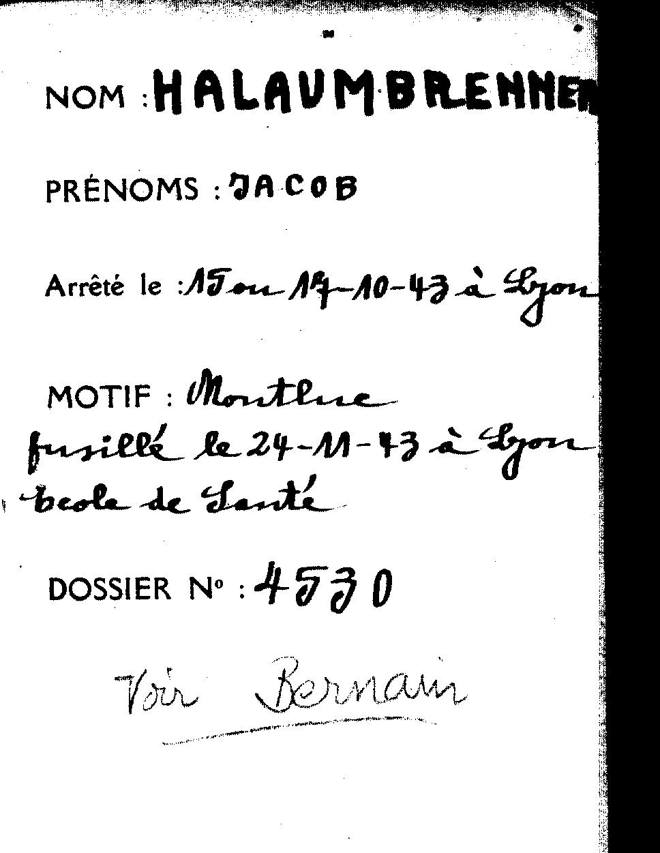 Hallaunbrenner-pere-3335W22 (Fiche)