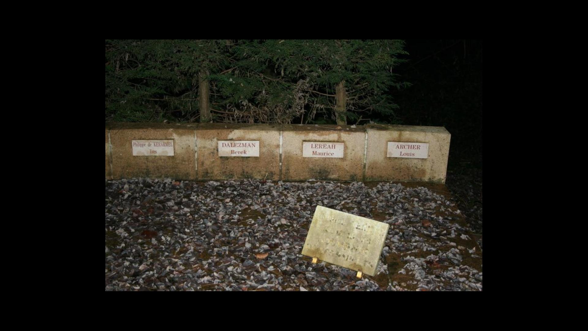 Maurive Lereah Monument au morts Chatillon d'Azergues