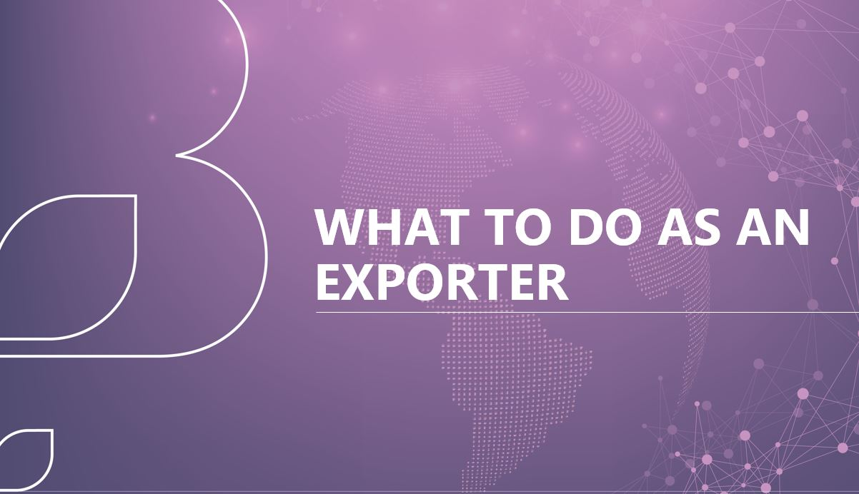 What do to as an exporter.JPG
