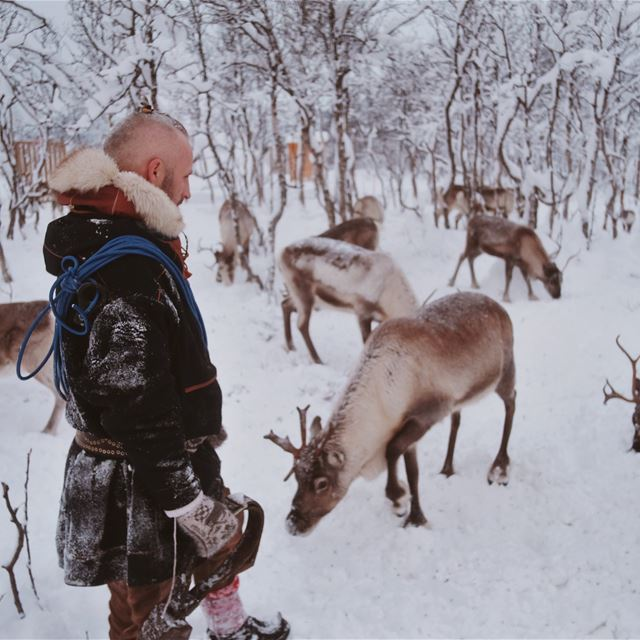 Sami Arctic Cruise in Norway 4.jpg