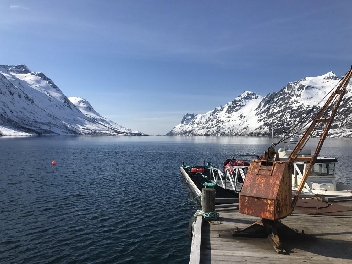 Arctic X - Fordsightseeing II.jpg