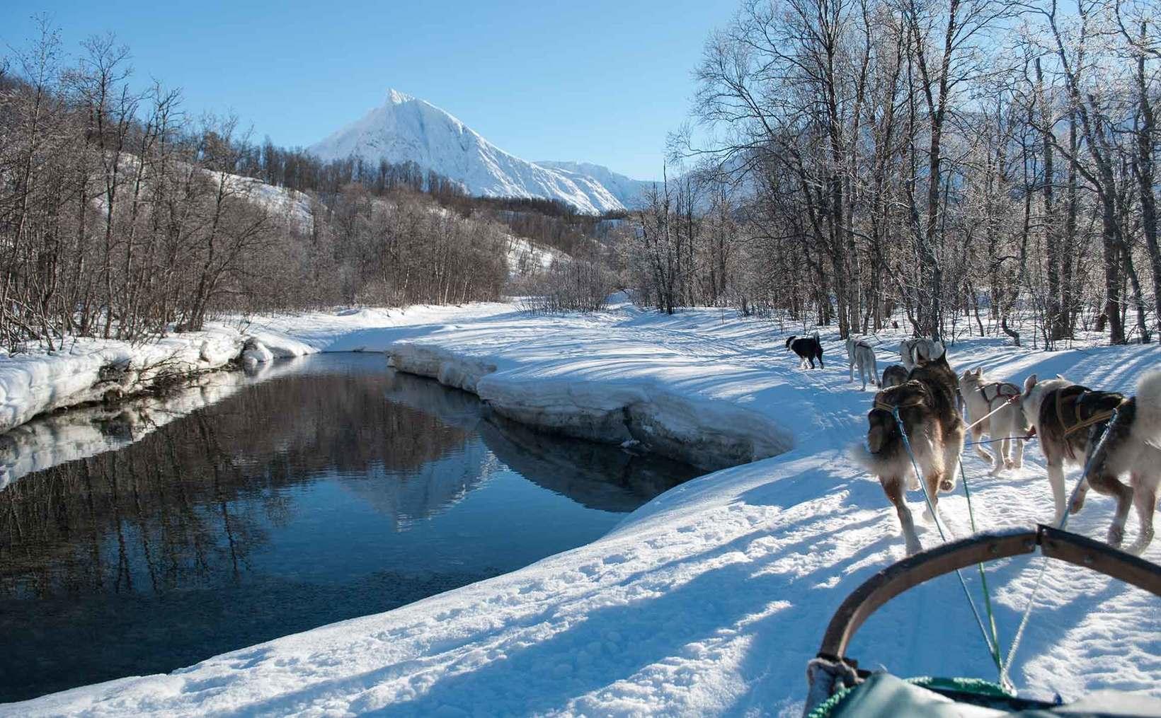 Dog sledding Arctic Cruie In Norway 9.jpg