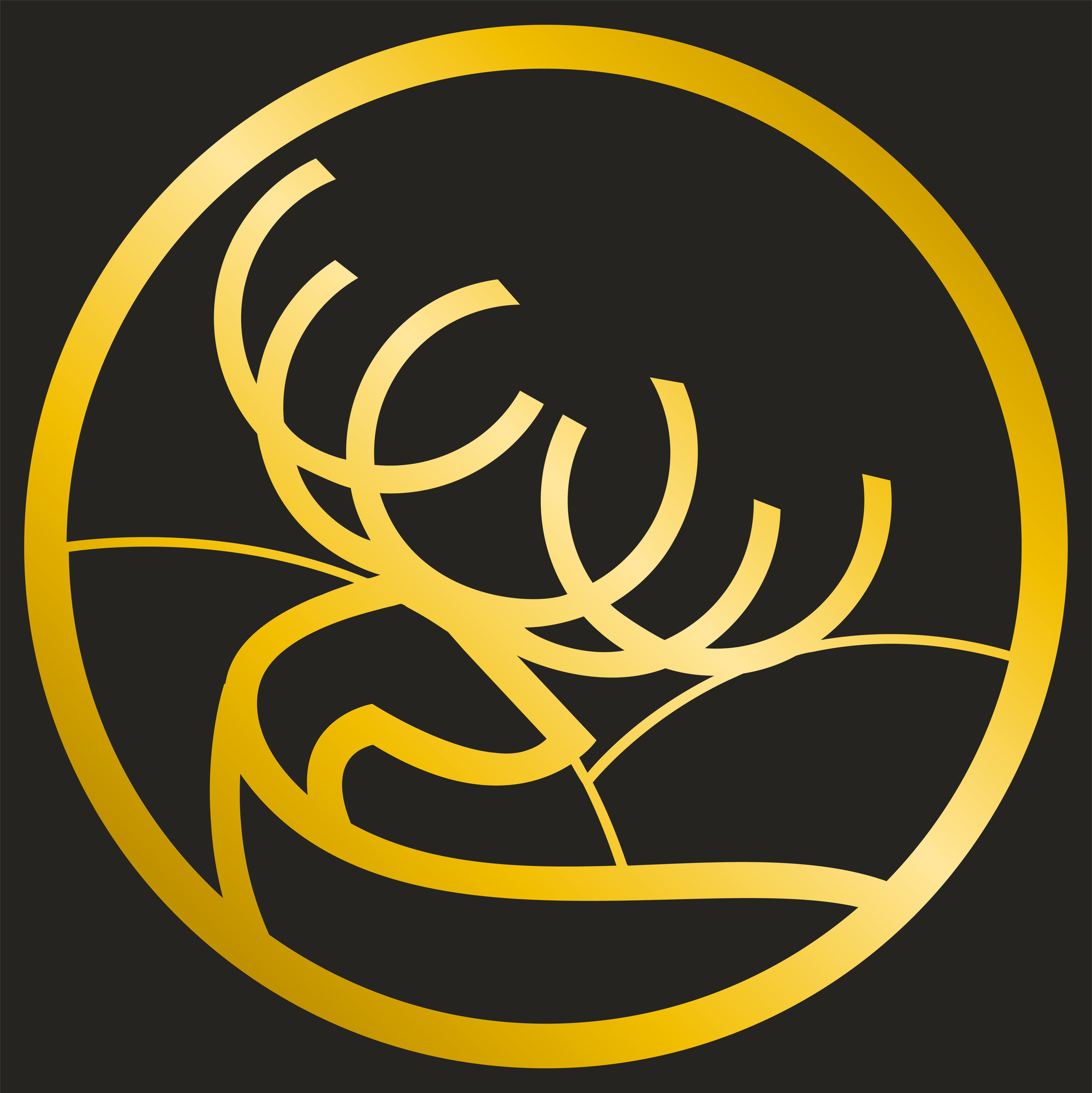 The Reindeer in our logo - Inspired from the Sami coulture and Tromsø City Weapon