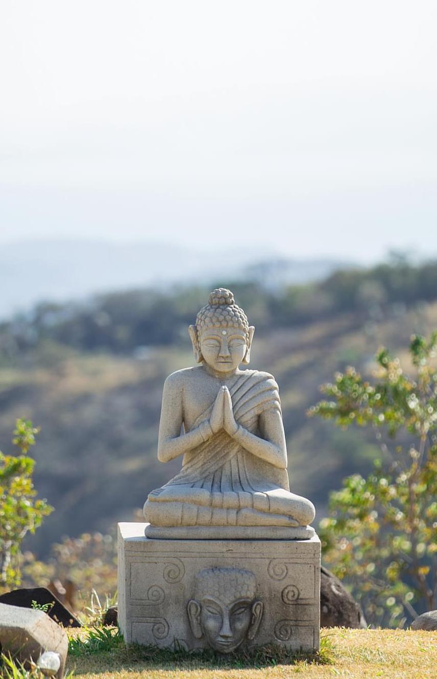 Costa Rica Yoga Retreat Vida Mountain