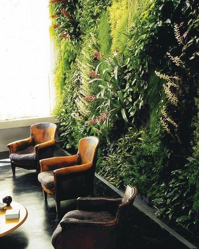Vertical gardens: bringing the beauty of nature indoors. Create a tranquil oasis in your restaurant or bar - get in touch to discuss your indoor garden project.  #verticalgarden #interiors #fortheloveofgreen #indoorgarden #findyouroasis