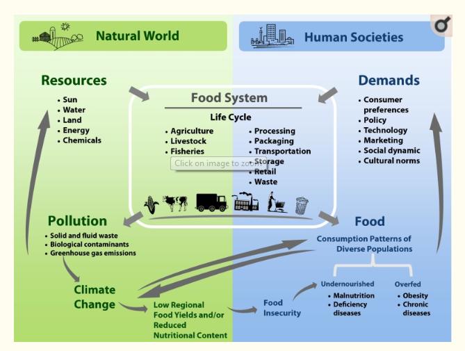 Understanding Baseline Principles of Environmental Nutrition Based Practices.    This Image is Courtesy of: Sabaté J, Harwatt H, Soret S. Environmental Nutrition: A New Frontier for Public Health.  Am J Public Health . 2016;106(5):815–821. doi:10.2105/AJPH.2016.303046