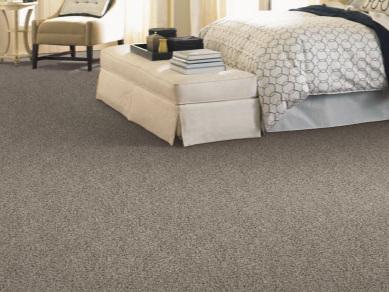 carpet-int-IN.jpg