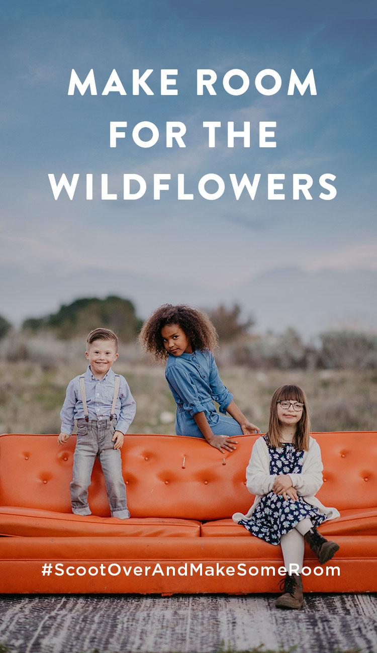 Stories_Scoot_Over_wildflowers.jpg