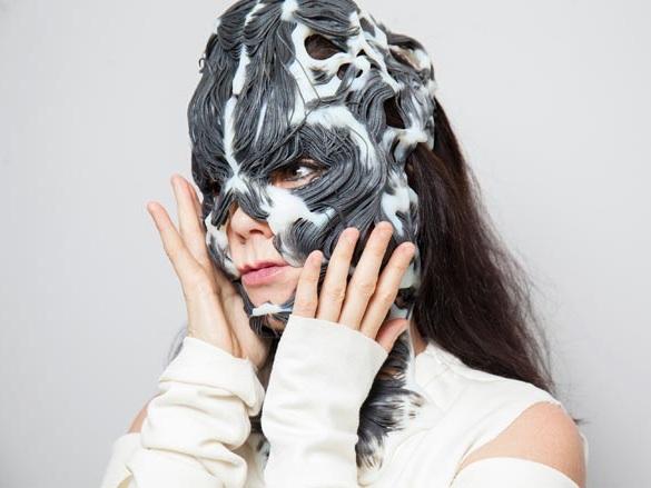 3d-printed-mask-bjork (2).jpg