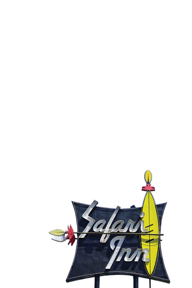 10x15safari.jpg