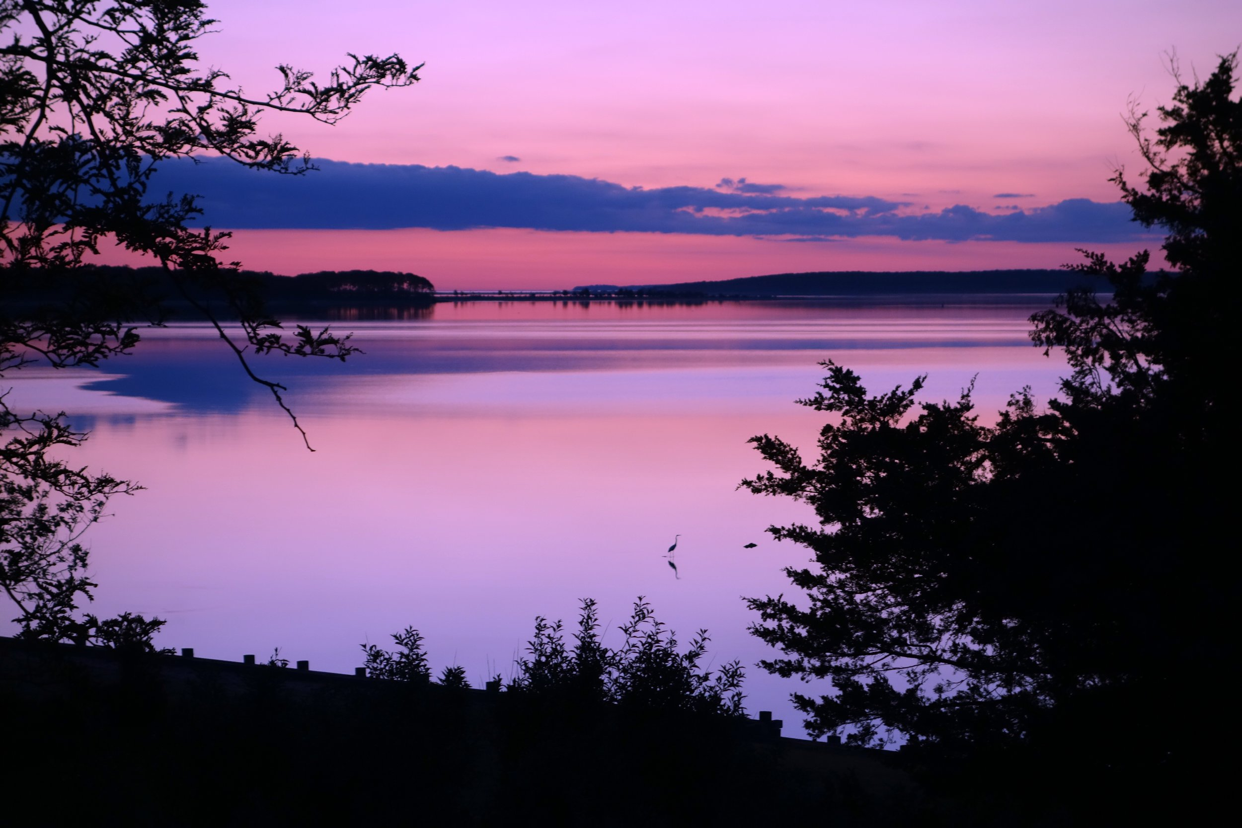 Dawn in Sag Harbor.jpg