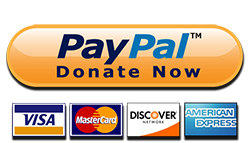 paypal-donate-button-high-quality-png copy.png