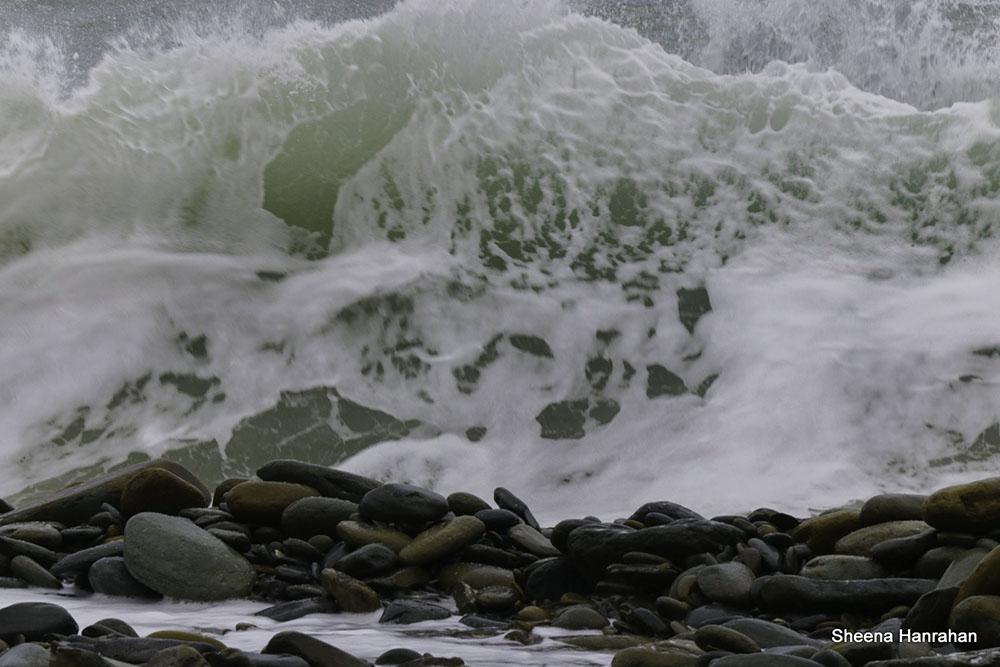 13 Sheena Hanrahan Land or Sea.jpg