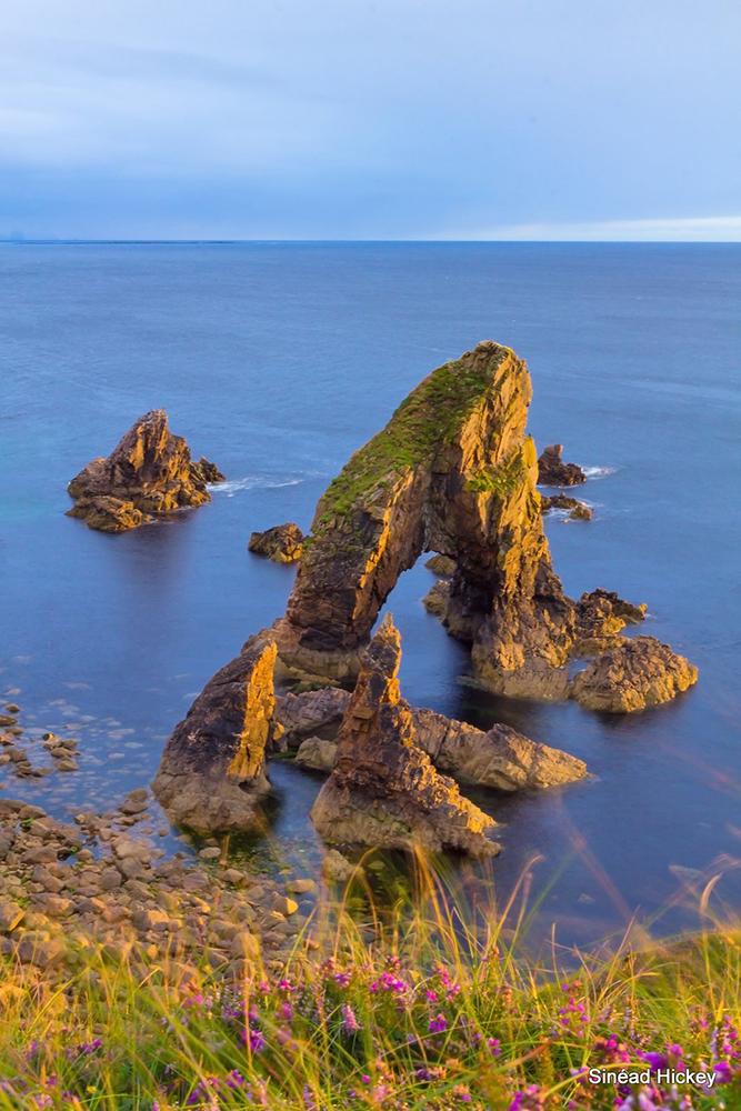 28 Sinéad Hickey land or sea.jpg