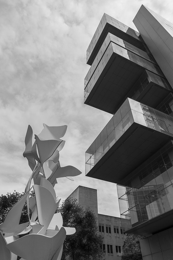 15 Sheena Hanrahan Architecture .jpg