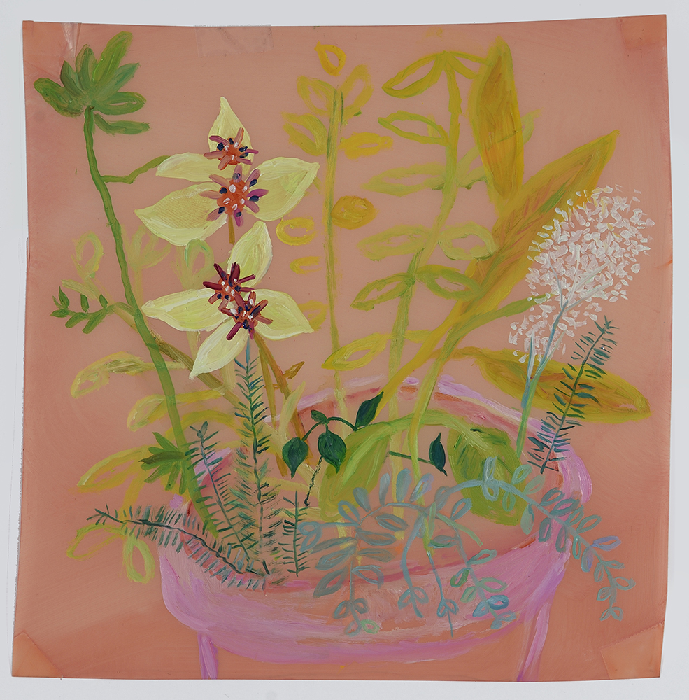 "Pink Pot , 2015 7"" x 7"" Oil on Mylar"