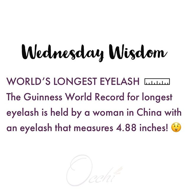 #wednesdaywisdom #eyelashes #lashfacts #biologylesson #sciencefact #themoreyouknow #eyelashextensions #lashes #lashextensions #volumelashes #volumelashextensions #individuallashes #lashfans #lashed #fullset #lashgoals #lashartist #eyelashextensionchicago #healthylashes #lashstudio