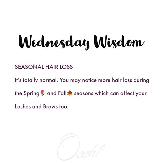 Seasonal Hair Loss is a thing and it's totally normal. #wednesdaywisdom  #hairloss #seasonalhairloss #eyelashes #lashfacts #biologylesson #sciencefact #themoreyouknow #eyelashextensions #lashes #lashextensions #individuallashes #lashgoals #lashartist #browartist #eyelashextensionchicago #beautyfacts #beautyeducation #seasonschange