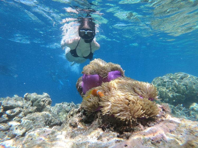 PCS to Hawaii | Military Families - snorkel adventure