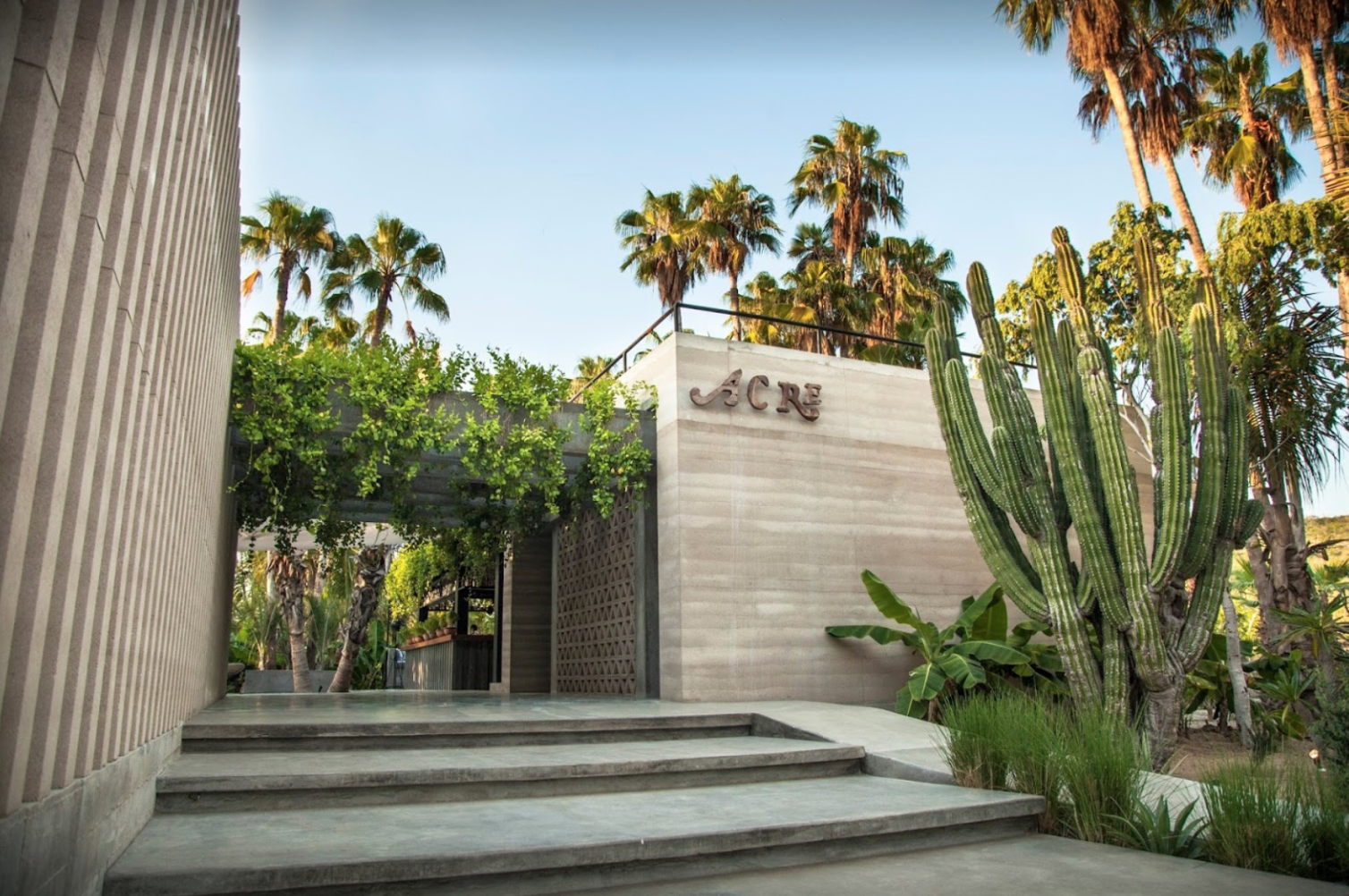 Acre   | Calle Sin Nombre, Animas Bajas Tel: +52 624 171 8226  A modern, design-centric take on farm-to-table restaurant (and just around the corner from the OG Flora Farms). A bit off the beaten path so car service is highly recommended; approximately 25-30 minutes from Palmilla but well worth it!