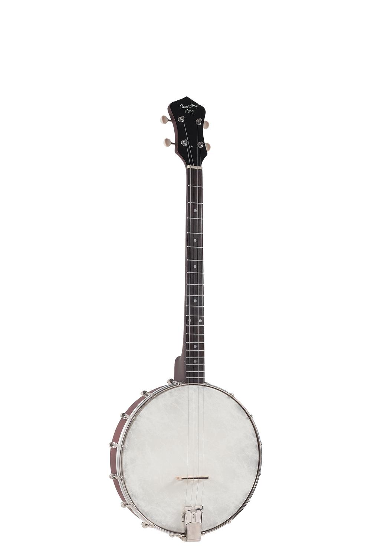 RKT-05 Tenor Banjo