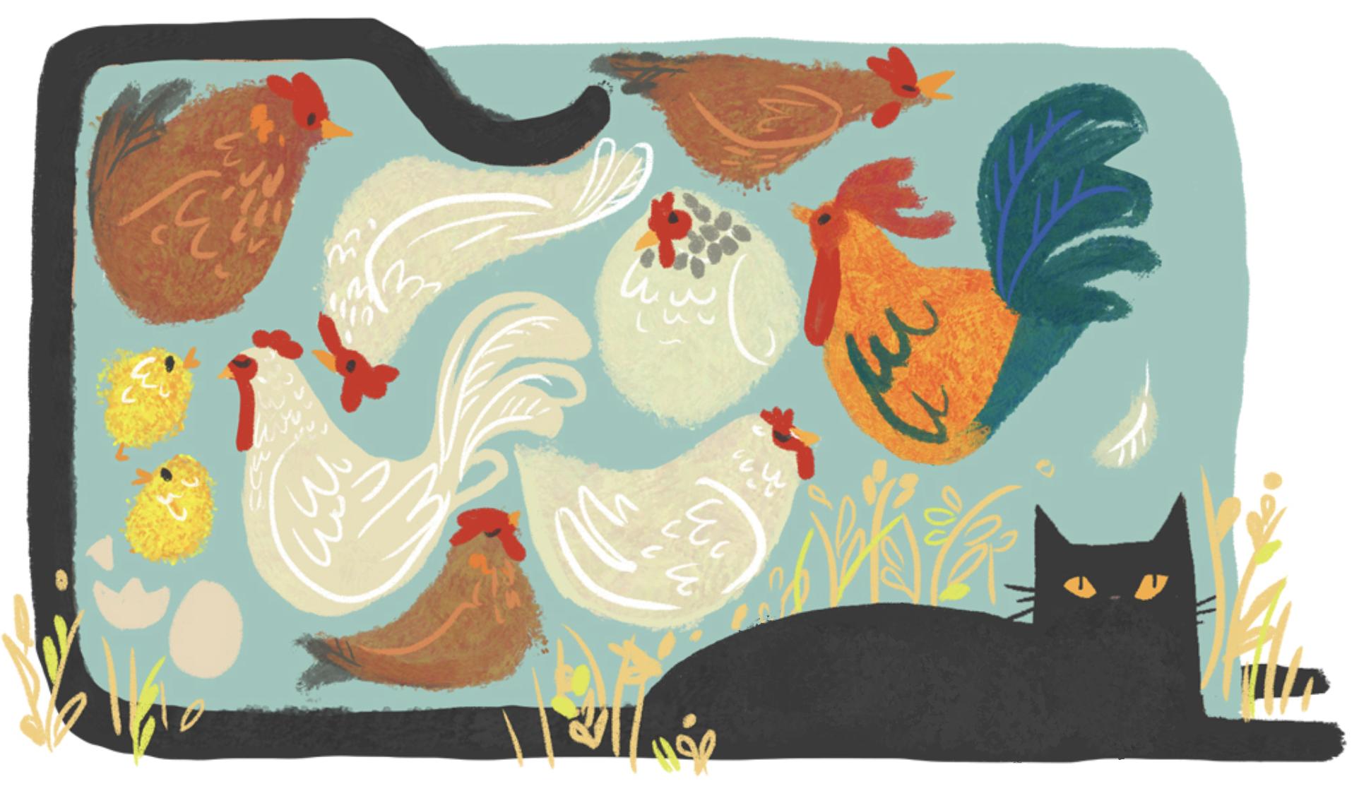 chickenherding