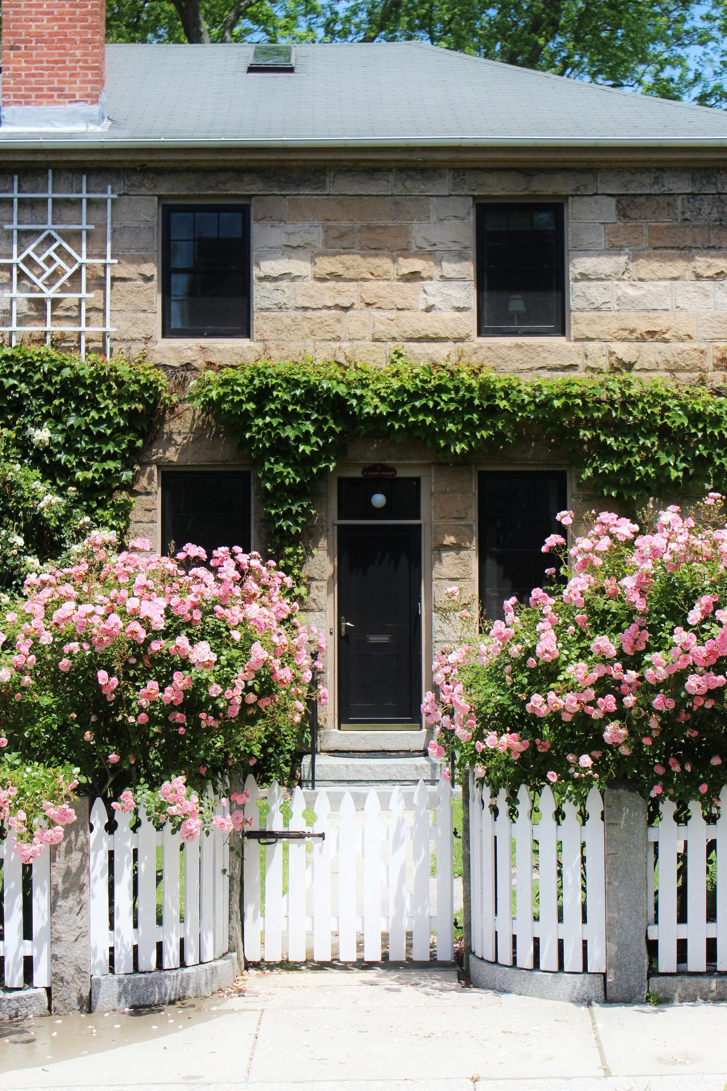 rose-entrance.jpg