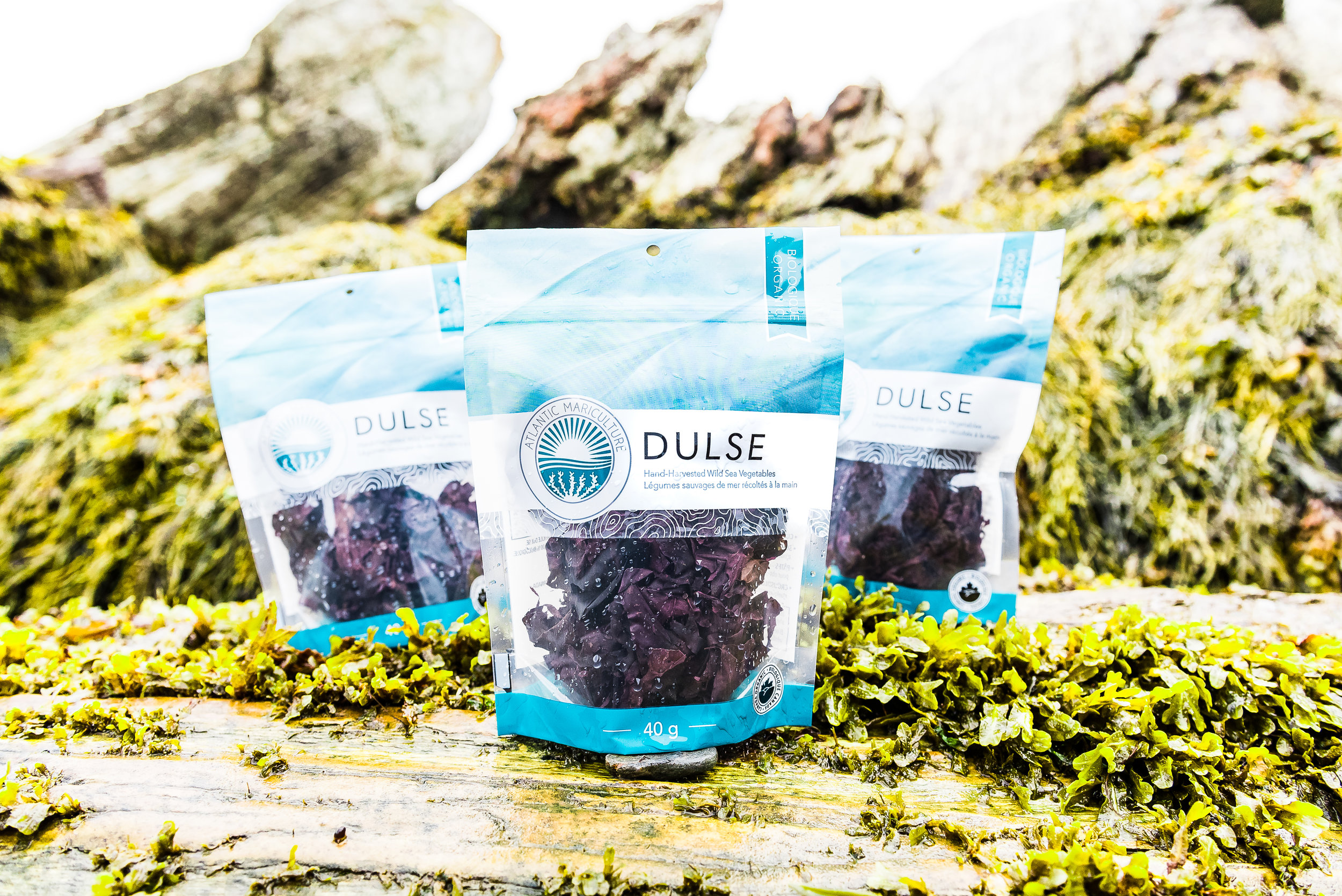 Our products - All natural, healthy and hand-picked. Find out about the importance of organic and about our many different sea vegetables.