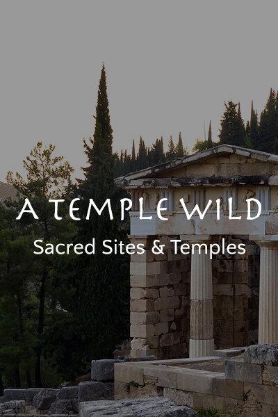 A Temple Wild
