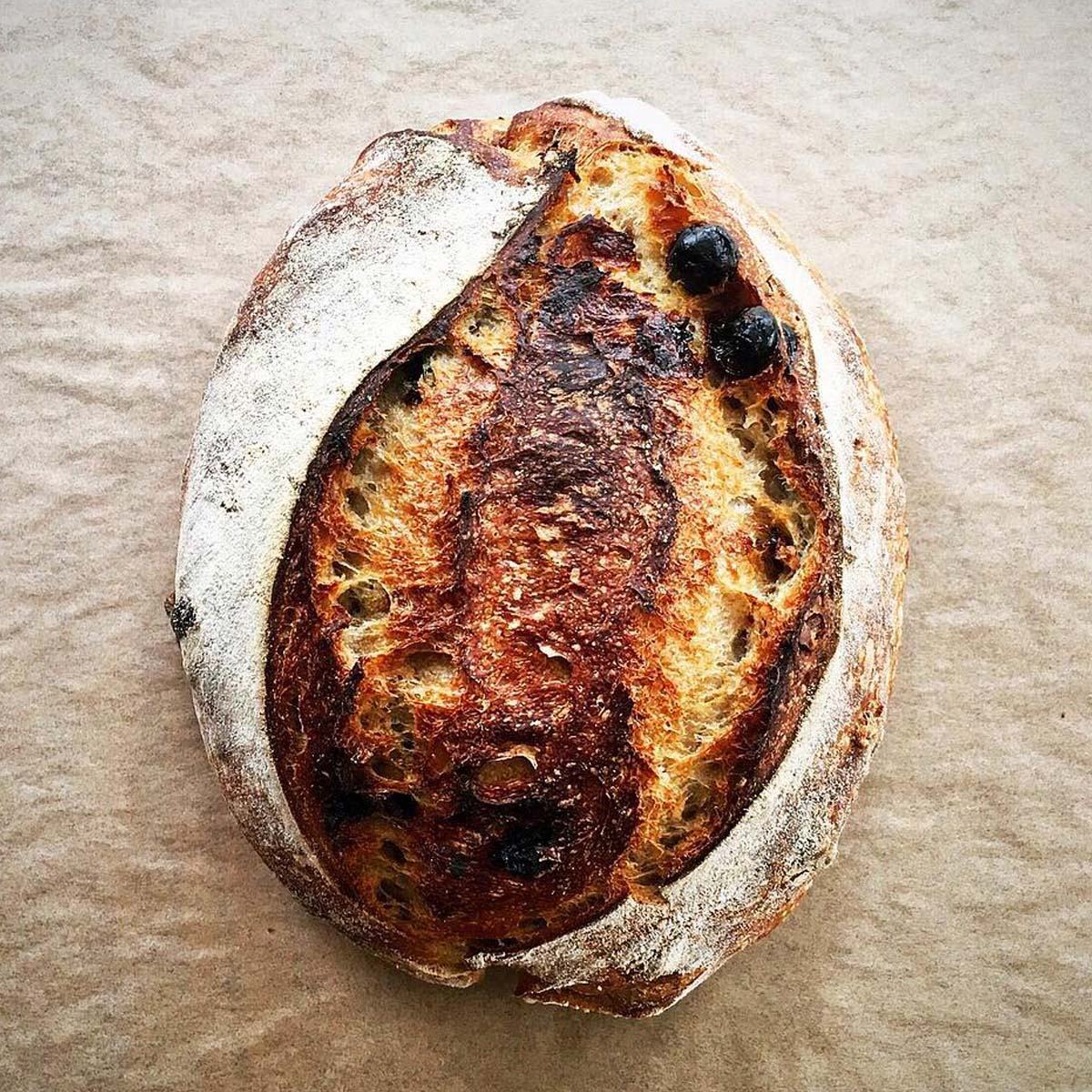 Tart Cherry Sourdough