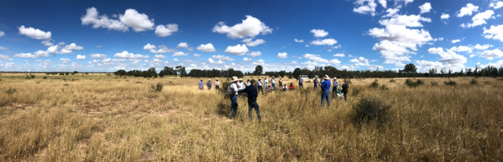 Field trip during an RCS course at Blackwater, central Queensland. Pic: Andrew Zerner from RCS.