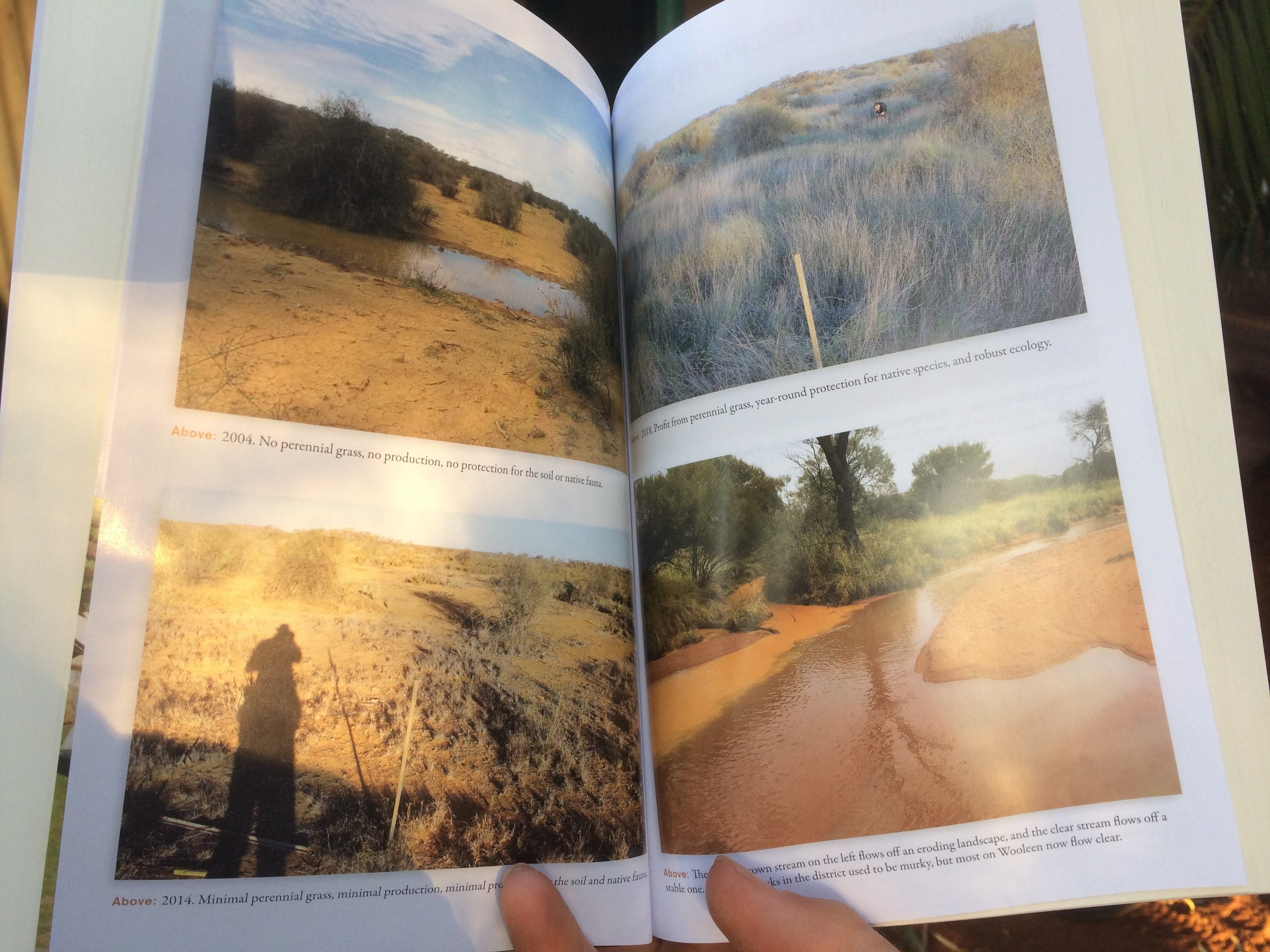 A spread of 'before and after' shots in the book.