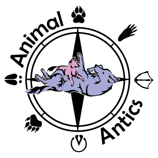 Animal antics behavior - Animal behavior solutions from a graduate of the University of Washington's Applied Animal Behavior program.Get help with everything from common horse problems, to cat litter box issues, and biting pocket pets.