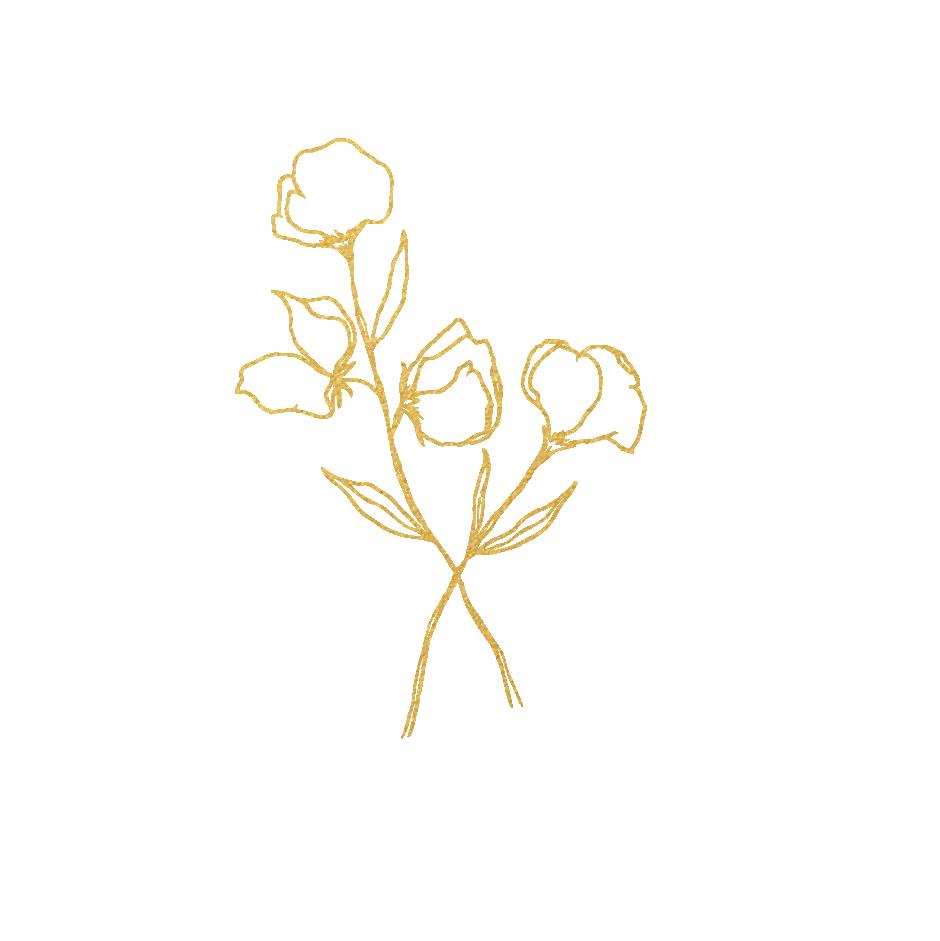 JJ_Logo_Primary.png