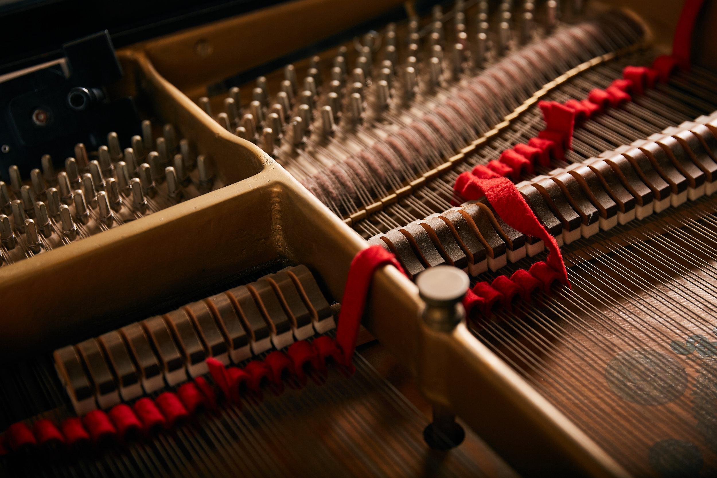 Piano Tuning - 17.jpg