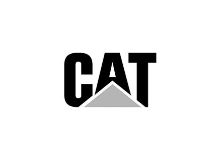 24_CAT.png